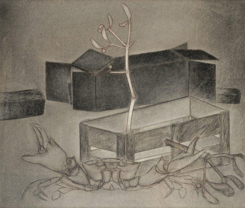 Le dormeur, fusain sur papier Fabriano, 70 x 80 cm, ca. 1990