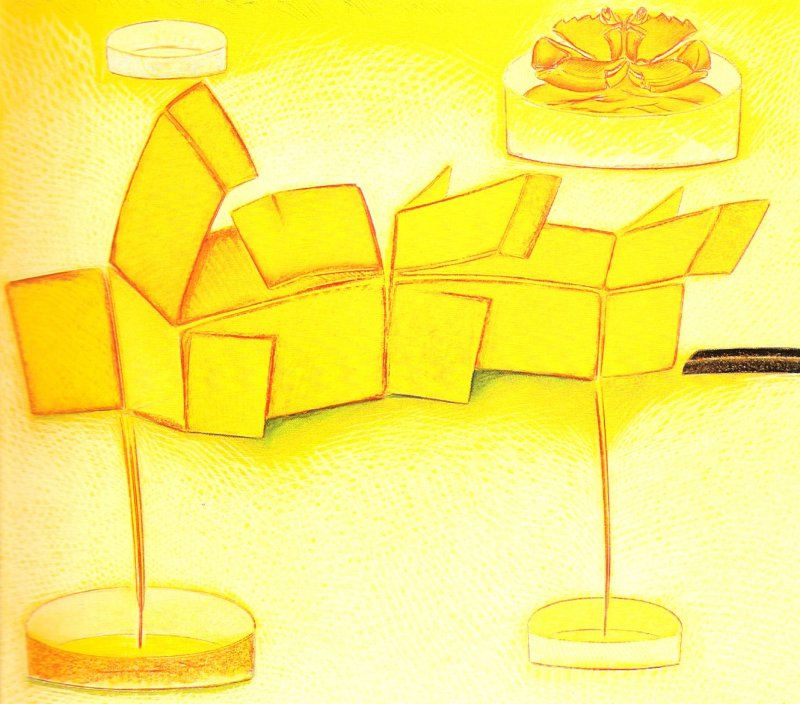 Nature morte aux deux boites, pastel sur papier Fabriano, 71 x 80 cm, 1990