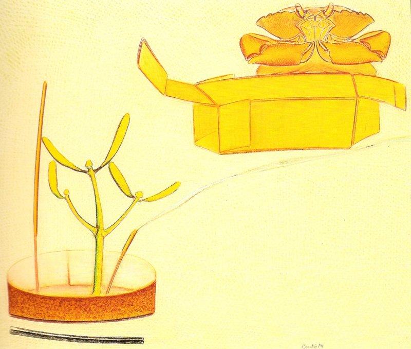 Nature morte avec un crabe, pastel sur papier Fabriano, 55 x 65 cm, 1990